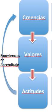 Creencias Valores Experiencias